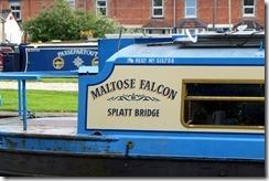Maltose Falcon