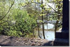 River Cherwell from Magdalen Bridge