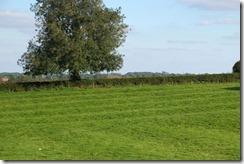 Welford Ridge & Furrow