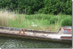 G&S Canal: Abandoned Barge