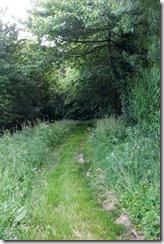 Path to Frampton