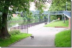 Worcester River Moorings